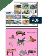 Animales Oviparos y Vivparos