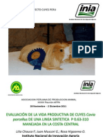 4. Evaluacion Vida Productiva Linea Sintetica