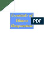 สาระสำคัญของการฝังเข็มในแพทย์แผนจีน
