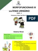 Sistema Urinario II Pdf_20130829131610