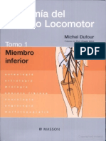 Netter Anatomia Aparato Locomotor
