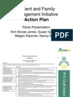 PQCNC PFE LS1 Action Plan Panel 20130904