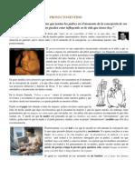 98f_proyecto Sentido Copy