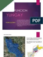 yungay