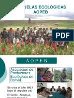 4. AOPEB Campesino a Campesino
