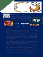 IK Informativo Agosto 2013