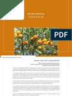 Reporte de La Naranja en Mexico