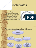 Carbohidratos Bien