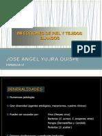 Piel y Tejidos Blandos Obst. 2008 (MT. Ulloa)