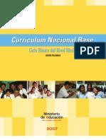 33946075 Curriculo Nacional Base Basicos