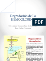 Degradacion de La Hemoglobina