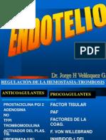 ATEROES[1] ENDOTELIO