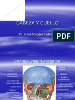 cabezaycuello-120913104510-phpapp01