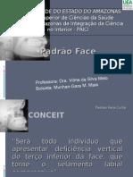 Face Curta - Gara Maia