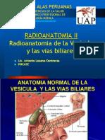 10. Radioanatomia Vias Biliares
