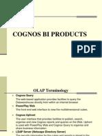 Cognos Presentation