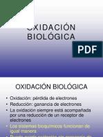 OXIDACIÓN BIOLÓGICA2