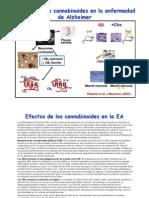 Cannabinoides y Alzheimer