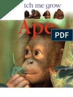 [DK ].Ape(Watch.me.Grow)