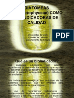 Seminario Diatomeas