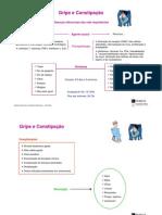 Fisiopatologia e farmacoterapia do sistema respiratório