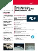 CAF Gasket Removal Manual