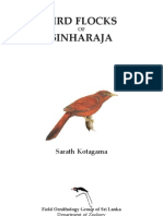 birds-flocks-of-sinharaja