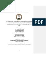 Trabajo_de_graduacion.docx