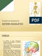 sistemaesqueletico-divisaodoesqueleto-130321113212-phpapp01