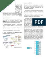 MAPA CONCEPTUAL - CUADRO SINÓPTICO - ORGANIZADORES GRÁFICOS - DIAGRAMA JERÁRQUICO - CADENA DE SECUENCIA