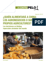 Caso 1 Quien alimentará a China (1)