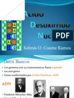 Clase 2 ADN