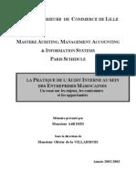 Audit Interne (2)