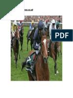 Horse Racing Materials 01