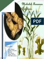 makalah tanaman lengkuas