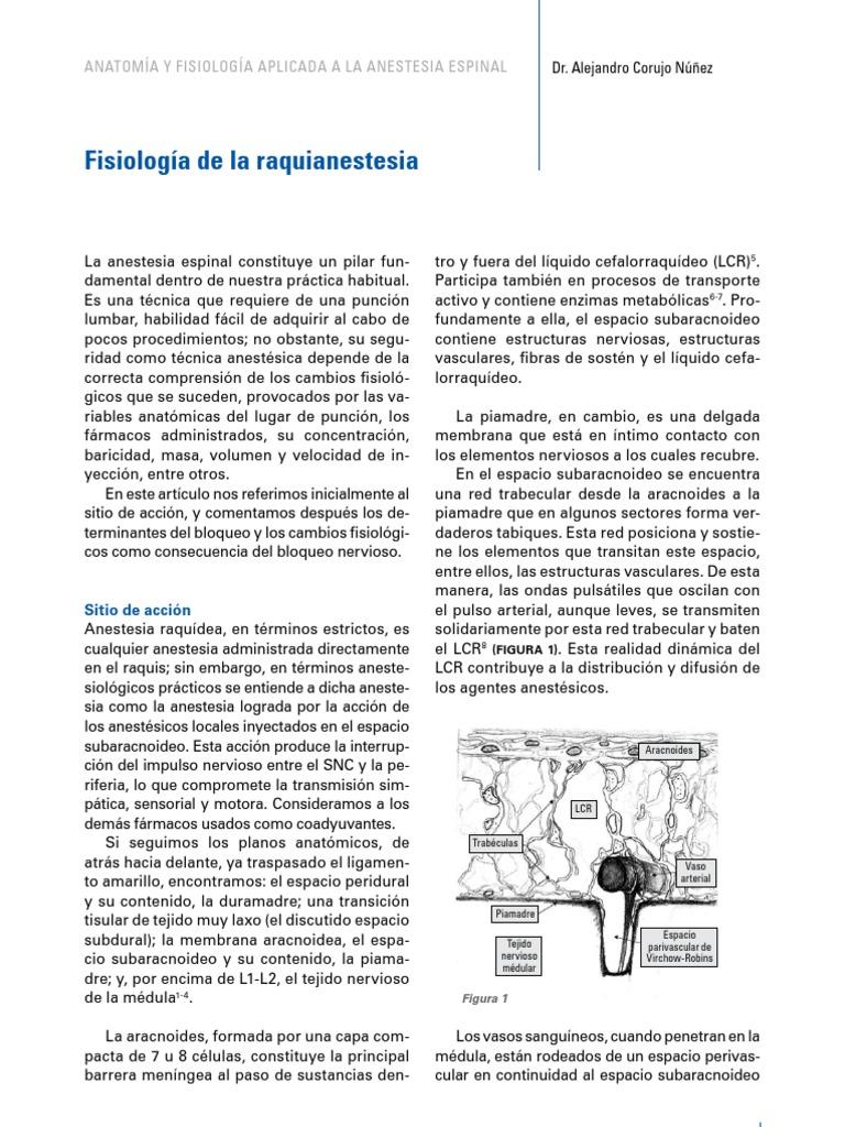 Fisiologia de La Raquidea