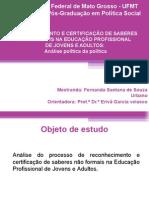 Apresentação - Qualificação - Fernanda