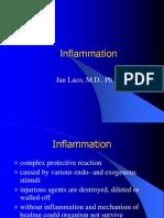 1 Inflammation
