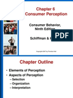 Chapter 6 - Consumer Perception