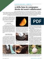 Orticoltura - La Luna e L'Influenza Sulle Colture
