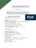 Inegalitatea_Cauchy-Buniakovski-Schwarz_în_rezolvarea_problemelor_de_minim_geometric