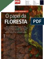 O papel da Floresta - Revista Super Interessante