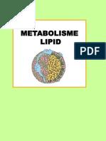 Lipid Kesmas