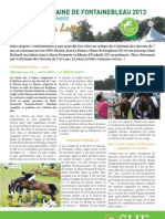 Letter 9 Great Week of Fontainebleau young horses final