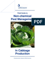 Field Guide to Non-chemical Pest Management in Cabbage Production