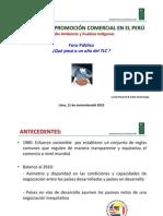 LPAUTRAT Ambiente y pueblos indígenas_0