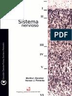 Sitema Nervioso