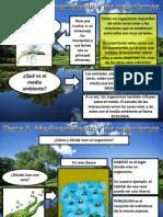 Tema 1 Medioambiente