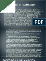 PROCESO DE INFLAMACIÒN