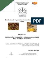 Proyecto Apicultura Carmen Villaflores